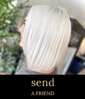 send a friend offer